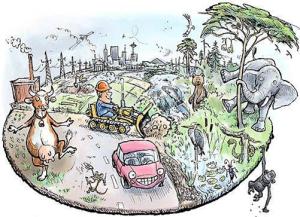 Överexploateringen hotar den biologiska mångfalden.